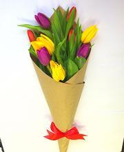Тюльпаны от производителя - надежный и выгодный бизнес